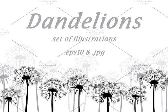 Dandelions Set Of Illustrations