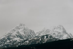 Snowy Mountains #11