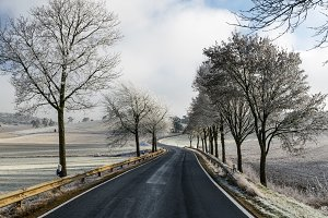 Curvy road/alley in winter