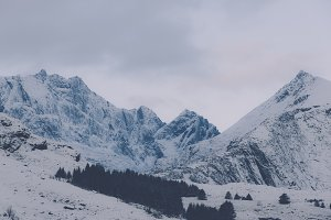 Snowy Mountains #28