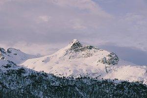 Snowy Mountains #37