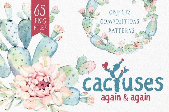 CACTUSES again and again