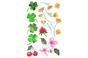 Watercolor flower clip art vector