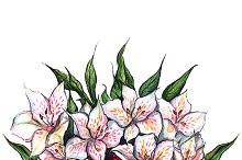 Watercolor alstroemeria composition