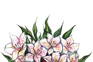 Watercolor alstroemeria composition