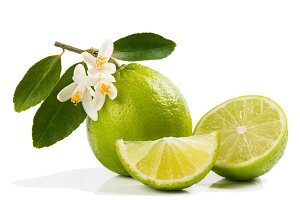 Lime with leaves and bloom