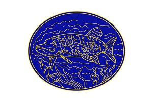 Northern Pike Fish Oval Mono Line