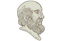 Plato Greek Philosopher Head