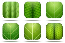 Leaves Square Icon Vector
