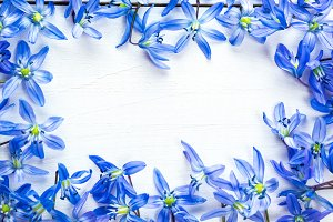 Spring frame with flowers snowdrops on white wooden background with free space