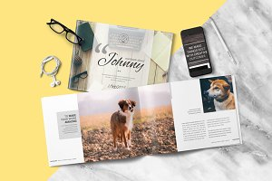 Multipurpose Brochure - Johnny