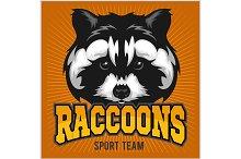 Raccoon head - sport emblem vector illustration