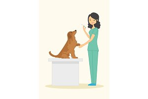 Cute woman veterinarian examines dog