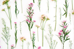Wildflowers background