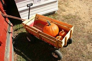 Pumpkin in a Wagon