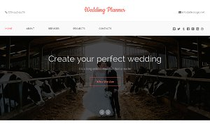 Wedding Planner One Page Theme