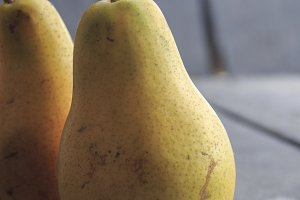 Fall pears on gray rustic background