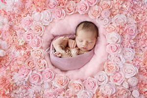 Digital Backdrop Newborn x 2