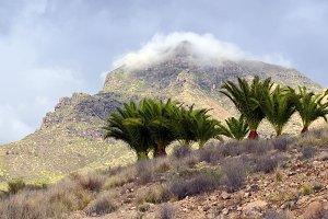 Roque del Conde mount,Tenerife.