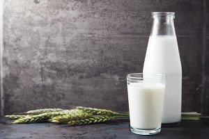 Glass of milk with wheat on grey background