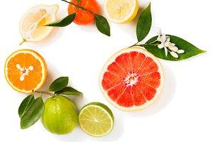 Different citrus fruit, top view.