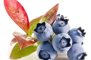 Ripe blueberries on the white