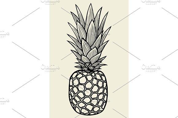 Pineapple vector Illustration in Illustrations