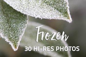 Frozen - 30 Hi-Res Photos