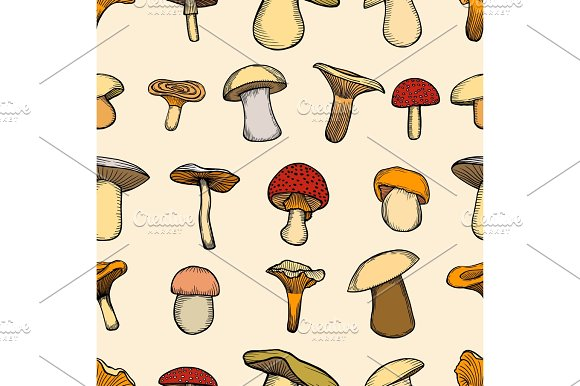 Vector Illustration With Porcini Pattern
