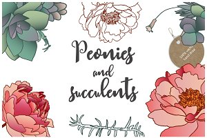 30% OFF - Peonies and succulents.