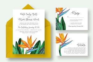 Bird Paradise Flower Wedding Suite