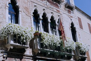 Byzantine windows in Venecia