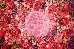 Peony Flower Walls x 2