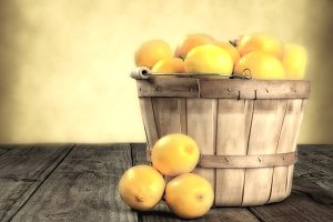 Lemon Basket