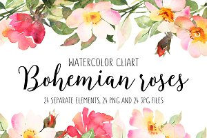 Bohemian roses watercolor bundle