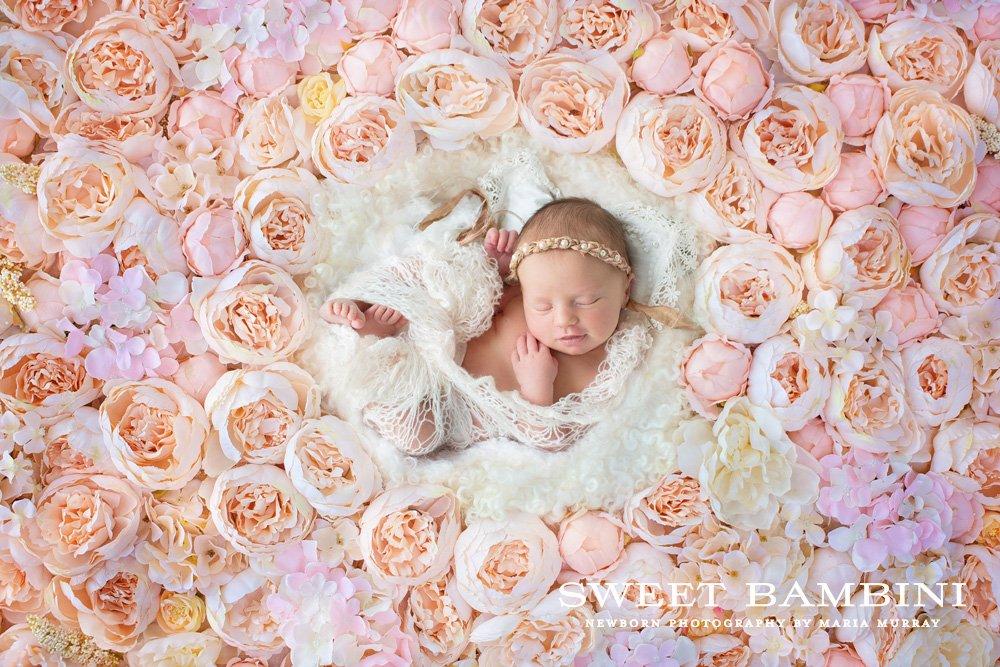 Digital backdrop newborn photography layer styles creative market