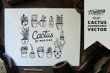 Cactus Handdrawn Element