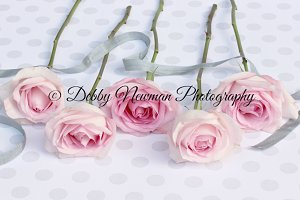 Pink Rose Stems with grey ribbon