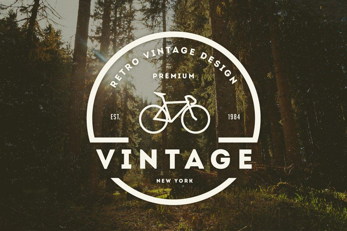 14 Vintage Logos Badges Logo Templates Creative Market