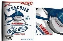 shark and surf illustrations