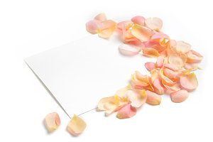 Styled stock photo with rose petals