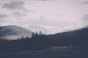 Dark Forest & Mountains Vintage Look