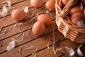Picked eggs in basket elevated