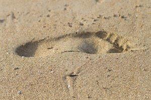 Footprint. Beach. Vertical.