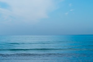 Beach. Vertical.