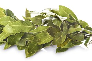 Bunch of laurel leaves isolated on white background