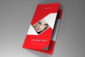 Trifold Indesign Brochure Fancy