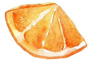 Watercolor orange fruit vector