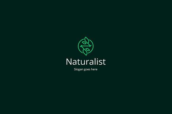 naturalist letter n logo template logo templates creative market