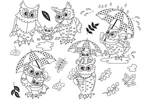 Vector Autumn Owls Set